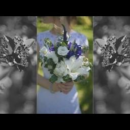 Видео #123008, автор: Михаил Илькевич