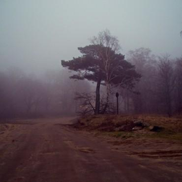 Фотография #144652, автор: Ирина Ден