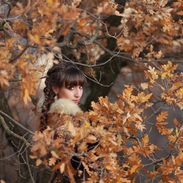 Фотография #256502, автор: Ольга Селезнева