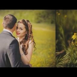 Видео #248167, автор: Кирилл Мищенко