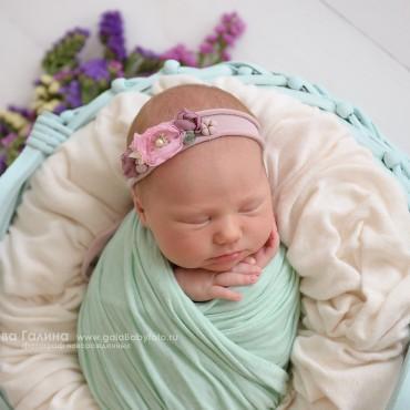 Альбом: Новорожденные, 27 фотографий