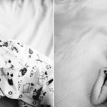 Фотография #255343, автор: Ирина Балаевская