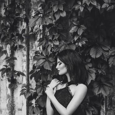 Фотография #259891, автор: Наталья Музычук