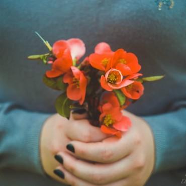 Фотография #255927, автор: Елизавета Петрологинова