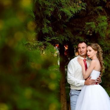 Альбом: Свадебная фотосъемка, 21 фотография