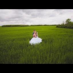 Видео #264050, автор: Андрей Трищук