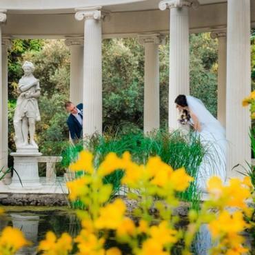 Альбом: Свадебная фотосъемка, 11 фотографий