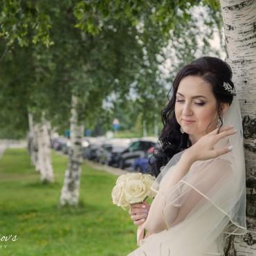 Фотография #247862, автор: Сергей Твердохлебов