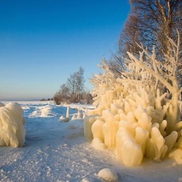 Фотография #236740, автор: Игорь Подгорный
