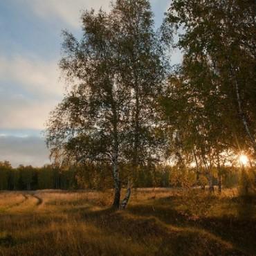 Фотография #236752, автор: Игорь Подгорный