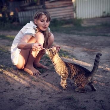 Фотография #237299, автор: Владимир Владар