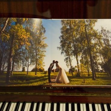 Фотография #238849, автор: Ринат Куйшин
