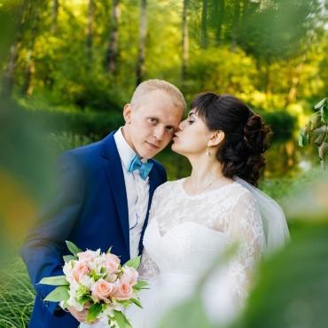 Фотография #243386, автор: Ната Гребенкина