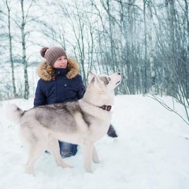 Фотография #239017, автор: Анастасия Веселова