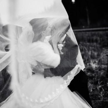 Фотография #243402, автор: Наталья Кузьмина