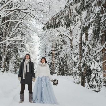 Фотография #245346, автор: Сергей Кокорев